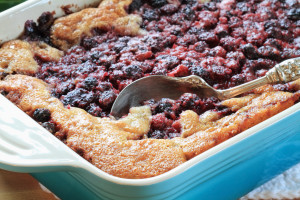 Macro of Blackberry Cobbler. Extreme shallow DOF with selective focus on lower corner of dish on golden crust and berries near spoon. [url=http://www.istockphoto.com/file_search.php?action=file&lightboxID=7736298] [IMG]http://i72.photobucket.com/albums/i174/StephanieInKY/breaskfastbanner.jpg[/IMG][/url][url=http://www.istockphoto.com/file_search.php?action=file&lightboxID=6446568] [IMG]http://i72.photobucket.com/albums/i174/StephanieInKY/dessertbanner.jpg[/IMG][/url]